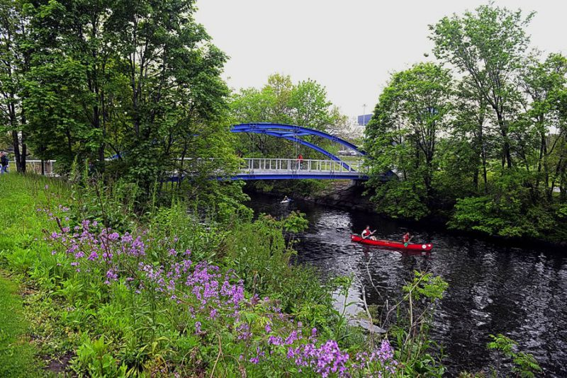Bronx River Greenway, Rehabilitation of Starlight Park